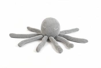 octopus medium