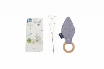 Teether Square Maple Organic Bamboo Cactus Grey Color Mood